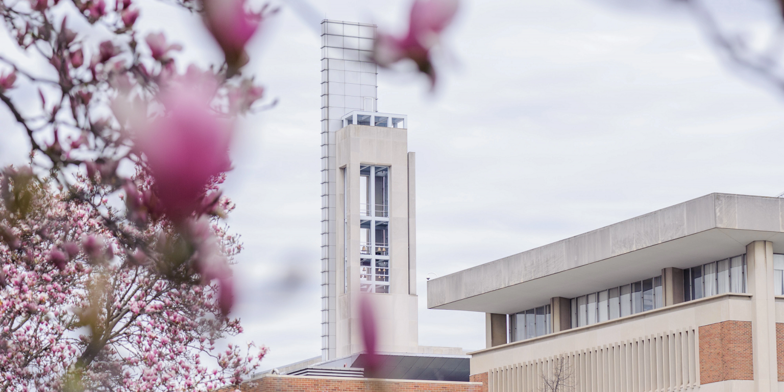 Campus Center framed between blooming tree branches