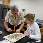 Calling all citizen-scientists: IU Herbarium seeking photos to document Indiana's flora