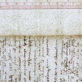 Newton watermark project led by IU professor could help date early books more accurately