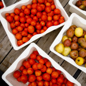 Indiana Uplands Winter Food Conference to focus on local food access and economic value