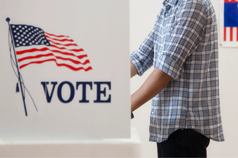 a picture of someone standing in a voting booth