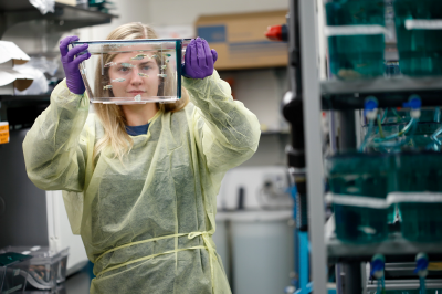 A woman holds up a  container with zebrafish