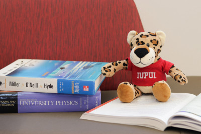 Stuffed jaguar named Paws sits on books in the University Library.