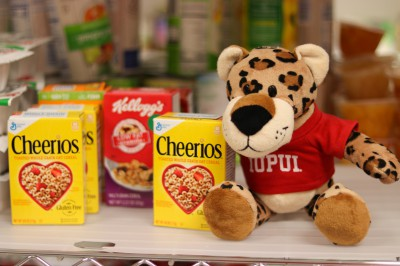 a stuffed jaguar sitting among a food pantry