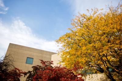 Fall on the IU Bloomington campus