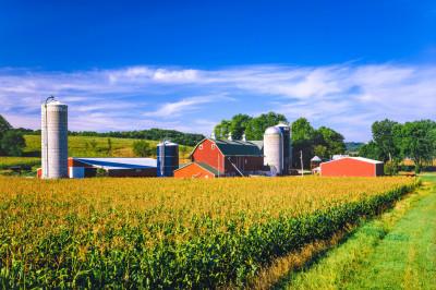 A farm with a barn and grain bins