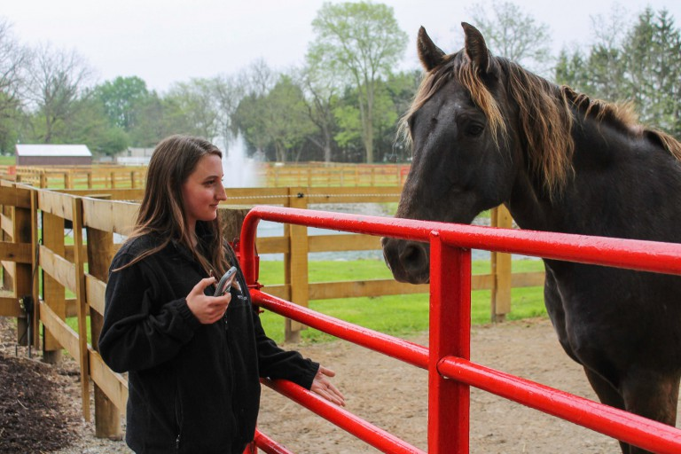 A female student bonds with a horse
