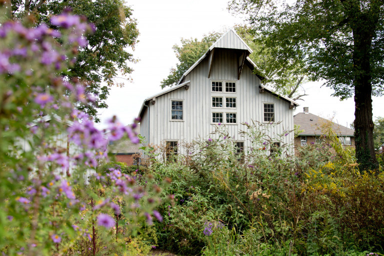 pink flowers in front of grey barn