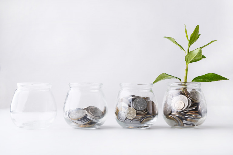 Plant growing on coins in glass jar. Increasing quantity of cash, startup, money growth concept.