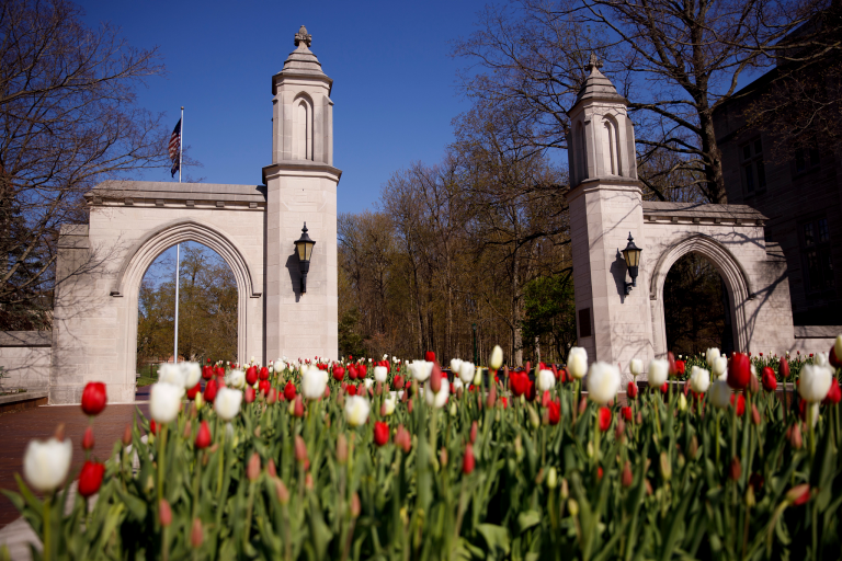 Red and white tulips in front of the Sample Gates