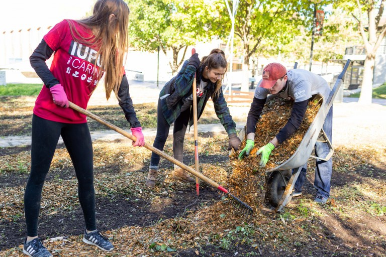Students gardening in service-learning project