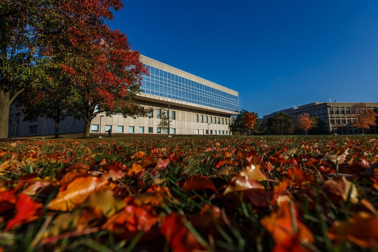 A campus building is surrounded by colorful leaves.
