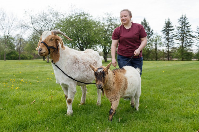 Shelby Lahne walks her goats.