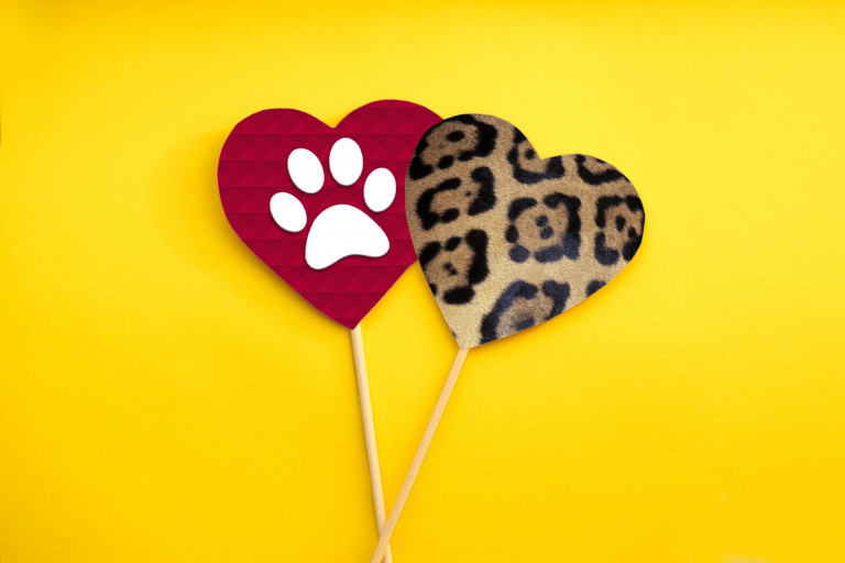 two hearts, one with jaguar print and the other with a paw