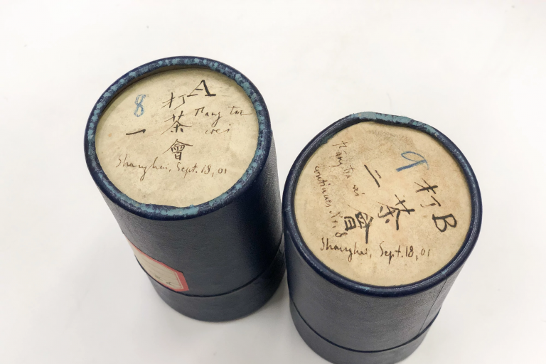 Wax cylinders from 1901