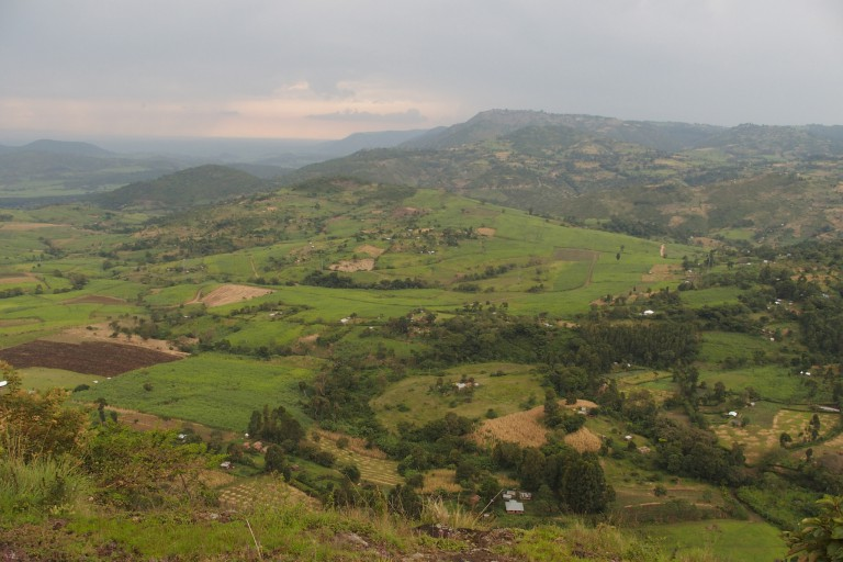 A green Kenyan landscape, with houses and farms visible in the distance.