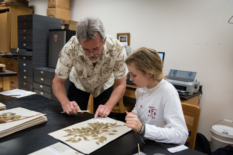 Eric Knox works with a plant specimen