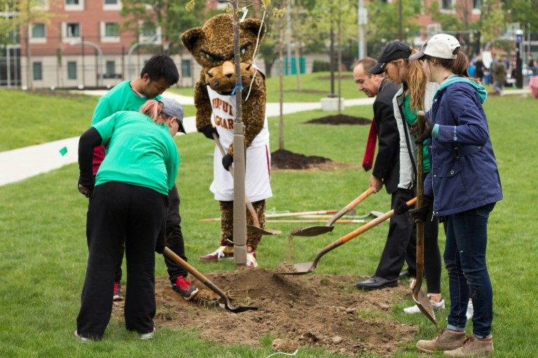A group of people planting a tree on campus