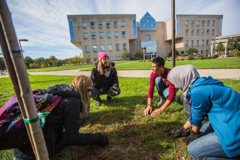 Students working with sod in front of University Library.
