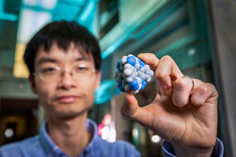 Yun Liu holds a 3D-printed model of the molecule
