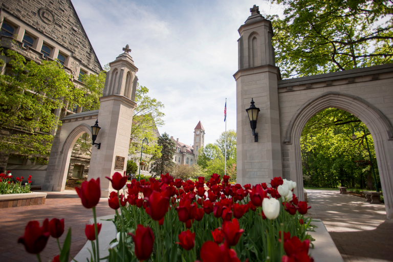 Red and white tulips at the Sample Gates