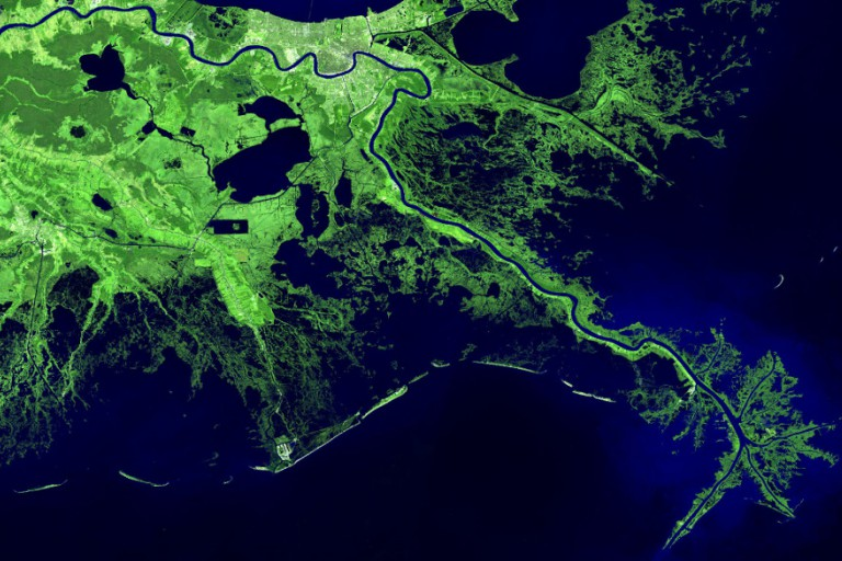 Satellite image of Mississippi River Delta coastal region