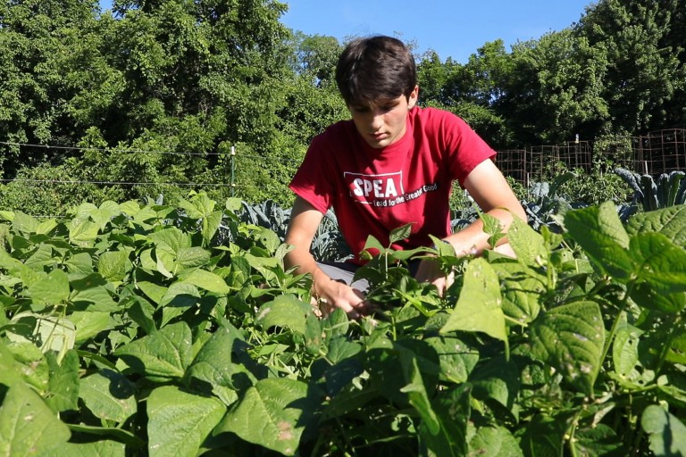 A student works on the Campus Farm
