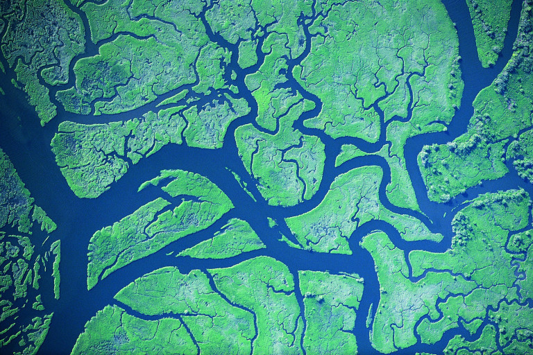 Aerial view of a river
