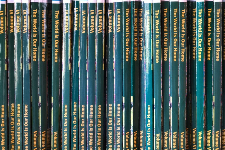 Books in the school library.
