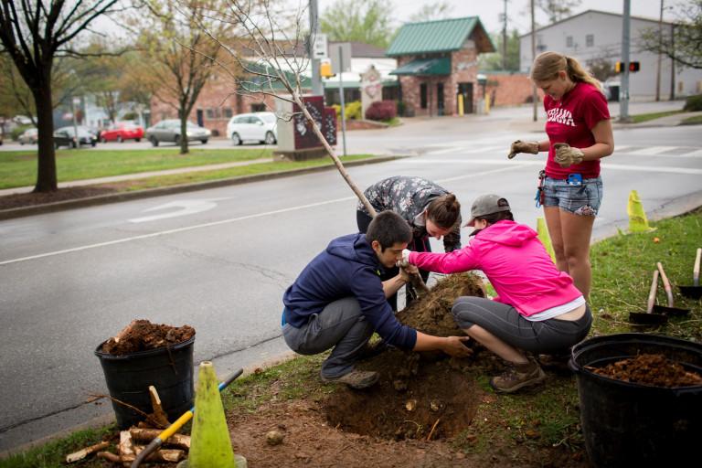 School volunteers plant a tree on Indiana Avenue.