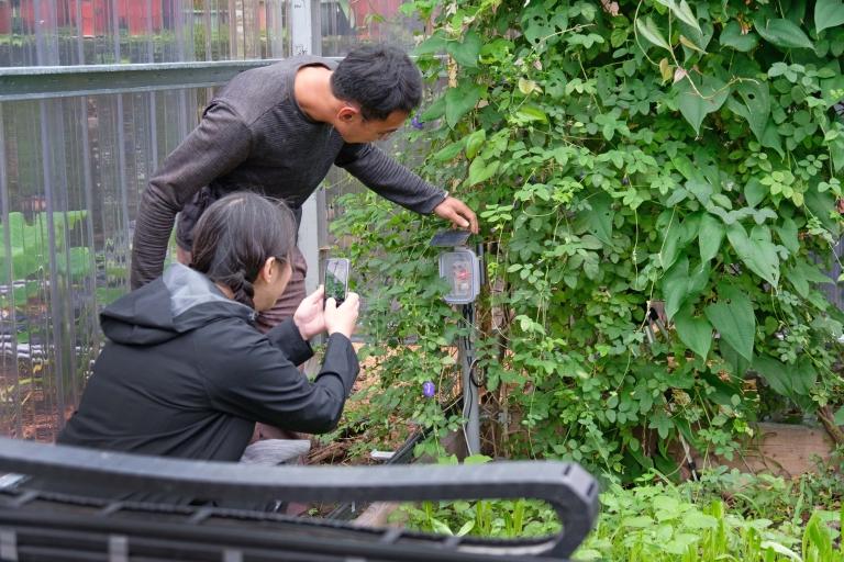 A solar sensor demonstration