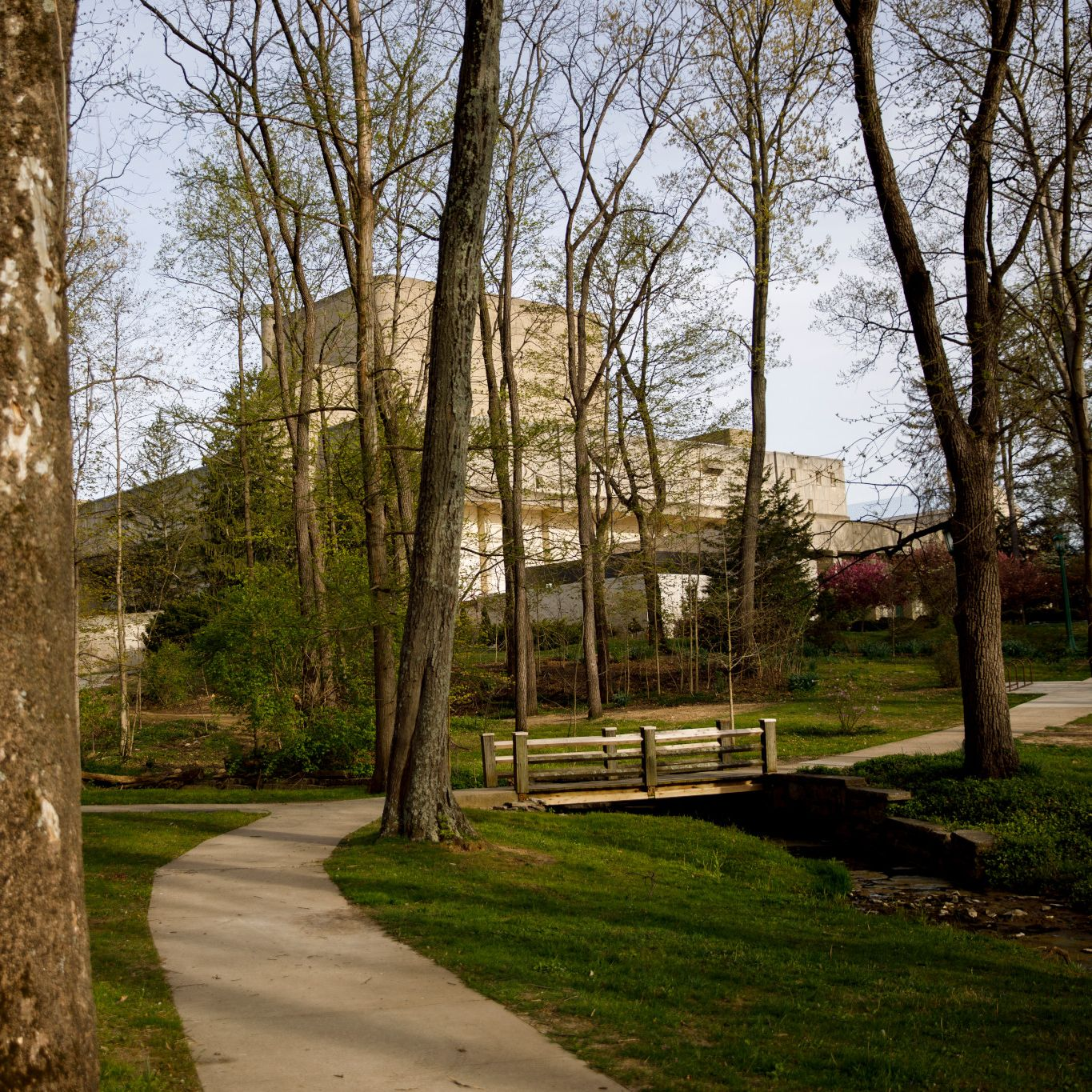 The Musical Arts Center viewed through a wooded area.