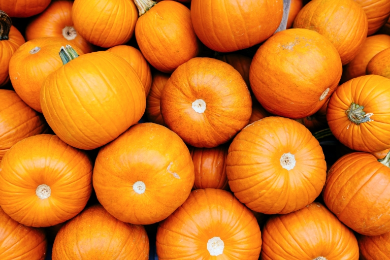 This photo features a pile of bright, orange pumpkins.