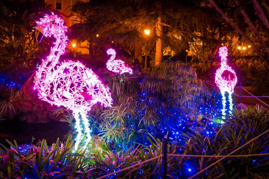Lit-up pink flamingos at night in a holiday display