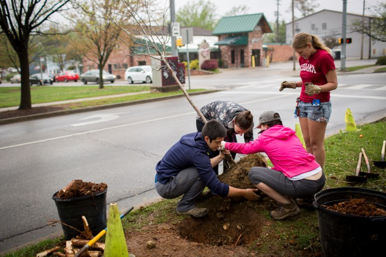 School volunteers plant a tree on Indiana Avenue.