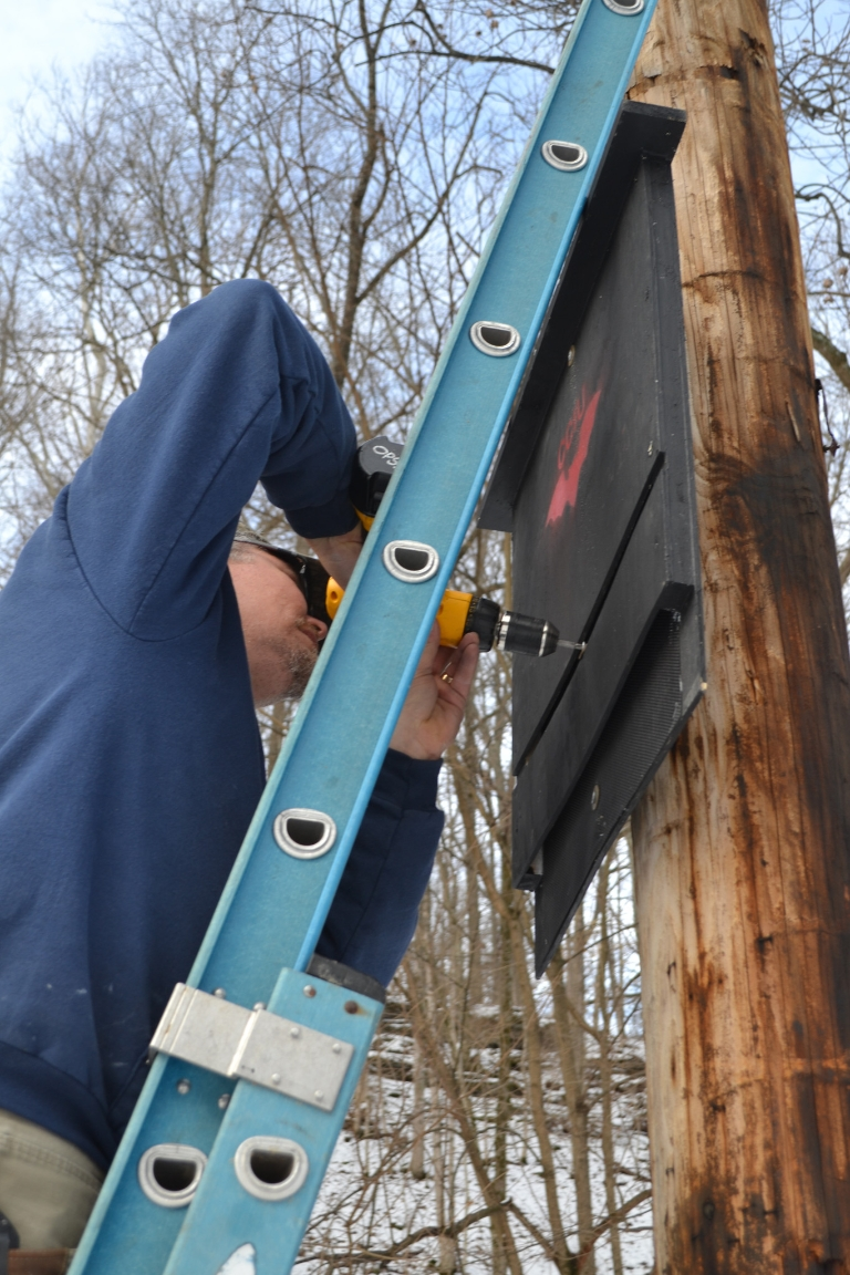 A person installing a bat box