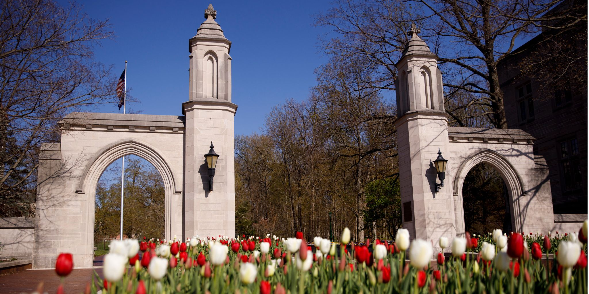 Red and white tulips blooming in front of the Sample Gates